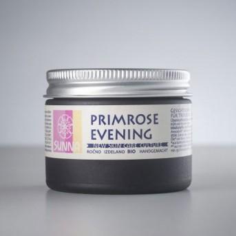 Primrose Evening