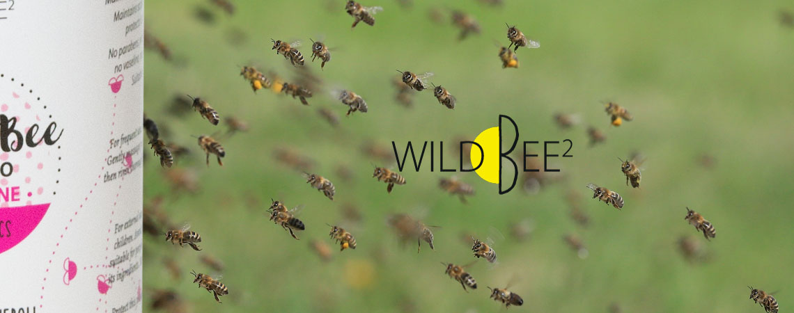 WildBee2
